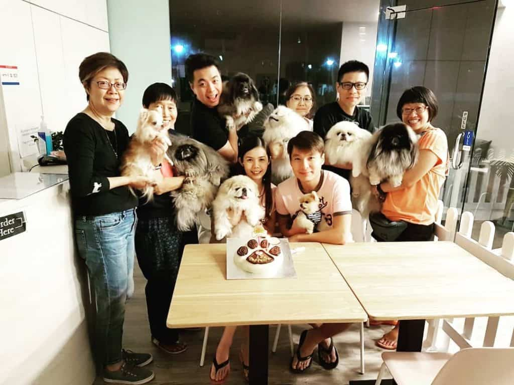 Best Dog Cafes in Singapore 2019 - Canine Café