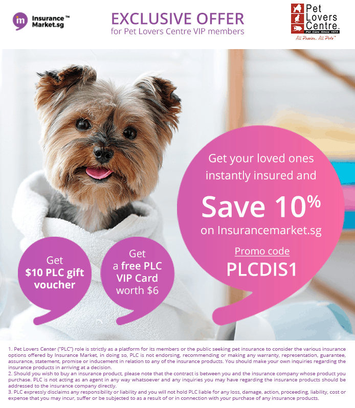 Ultimate Guide To Pet Insurance In Singapore 2019 - Insurance Market and Pet Lovers Centre Exclusive Offer