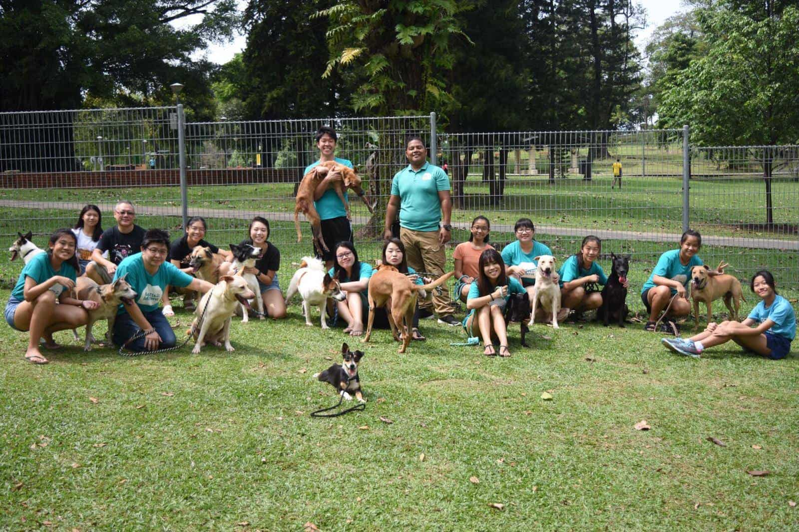 A group of volunteers posing with dogs on a field