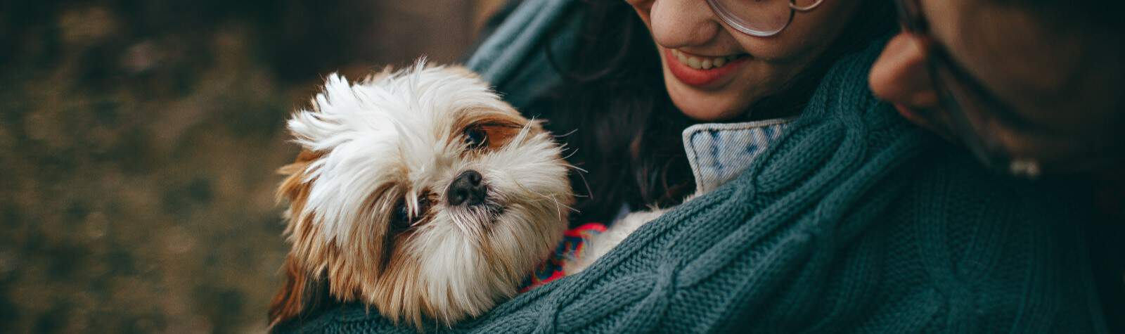 5 Proven Facts About Dogs That Make Them A Better Companion Than Your Partner