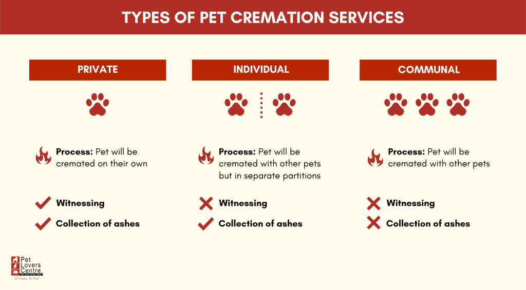 Infographic - Types of pet cremation services