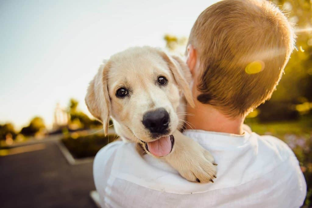 A man hugging a dog