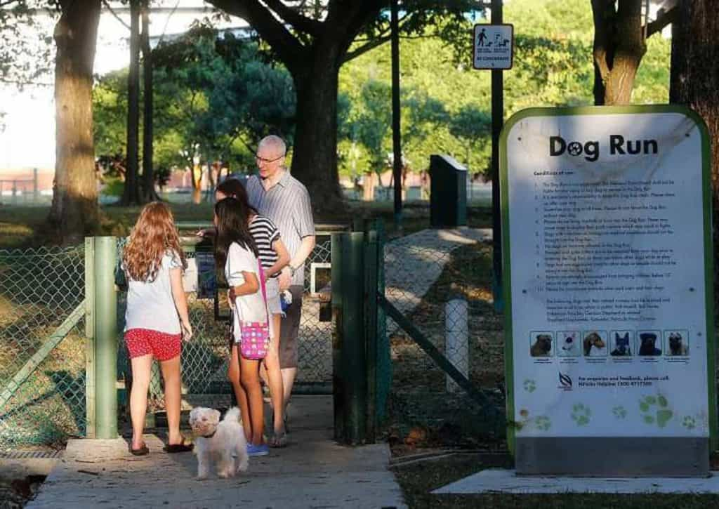 People at the entrance of a dog run