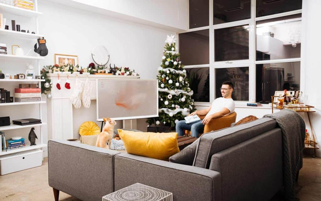 Owner looking at dog in living room
