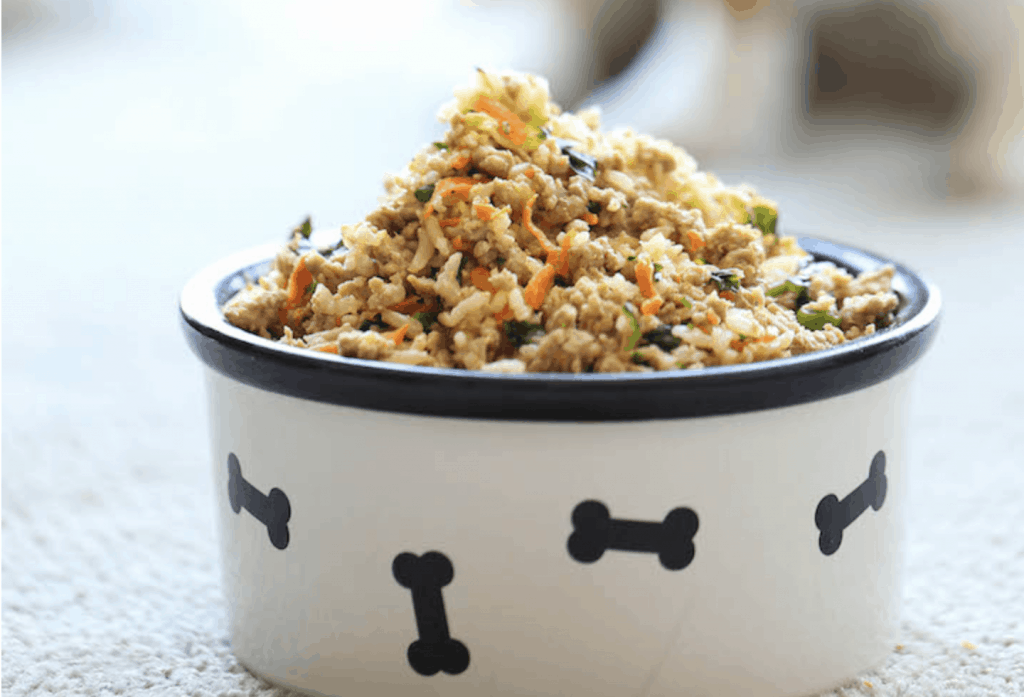 Dog bowl with minced meat and chopped veggies