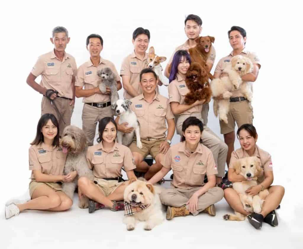 Dog trainers dressed in uniform holding dogs