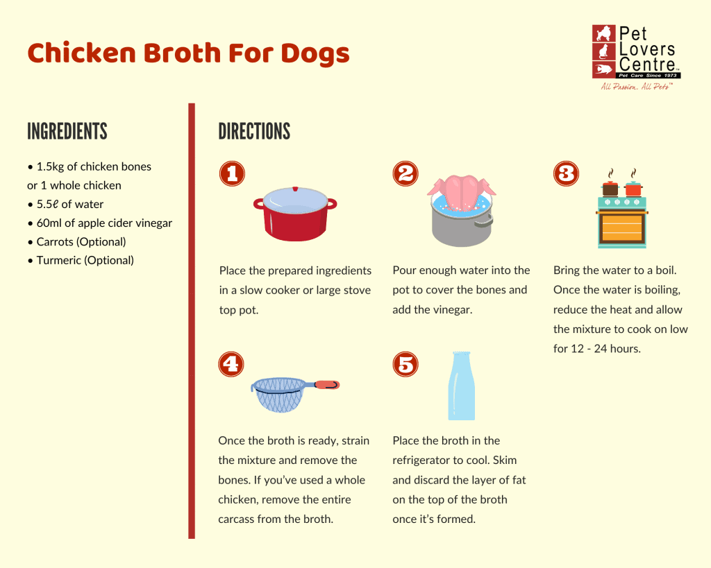 Chicken Broth for Dogs Recipe Infographic