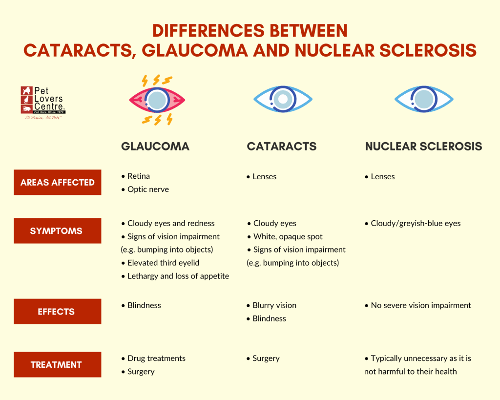 Infographic on the differences between cataracts, glaucoma and nuclear sclerosis