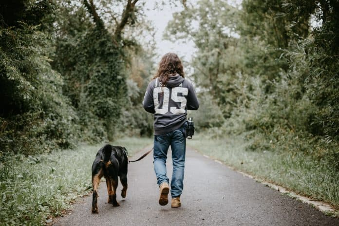 Back view of man walking his dog on a trail