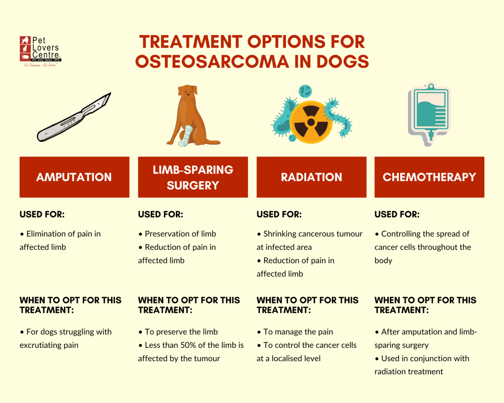 infographic for treatment options for osteosarcoma in dogs