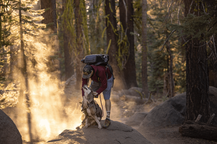 owner hiking with his dog
