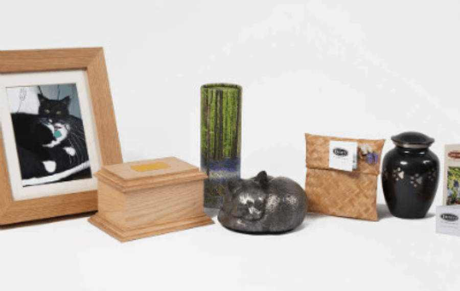 Pet Grooming Xpert cremation service